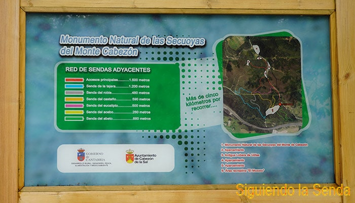 PANELES_BOSQUE_SECUOYAS_CABEZON_SAL_2