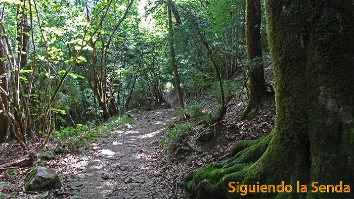 SENDERO_GARGANTA_DE_ESCUAIN_RIO_YAGA_0